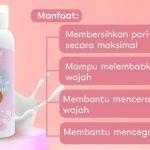 Milk Cleanser SR12 Skincare